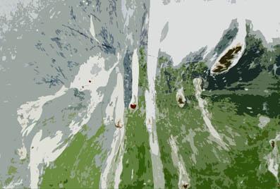 pane-distortion