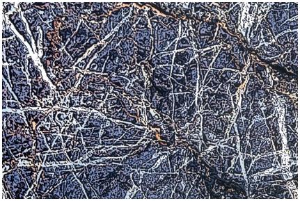 Tasmanian Rock Pattern